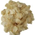 2020 New Crop Dehydrated Garlic Flakes