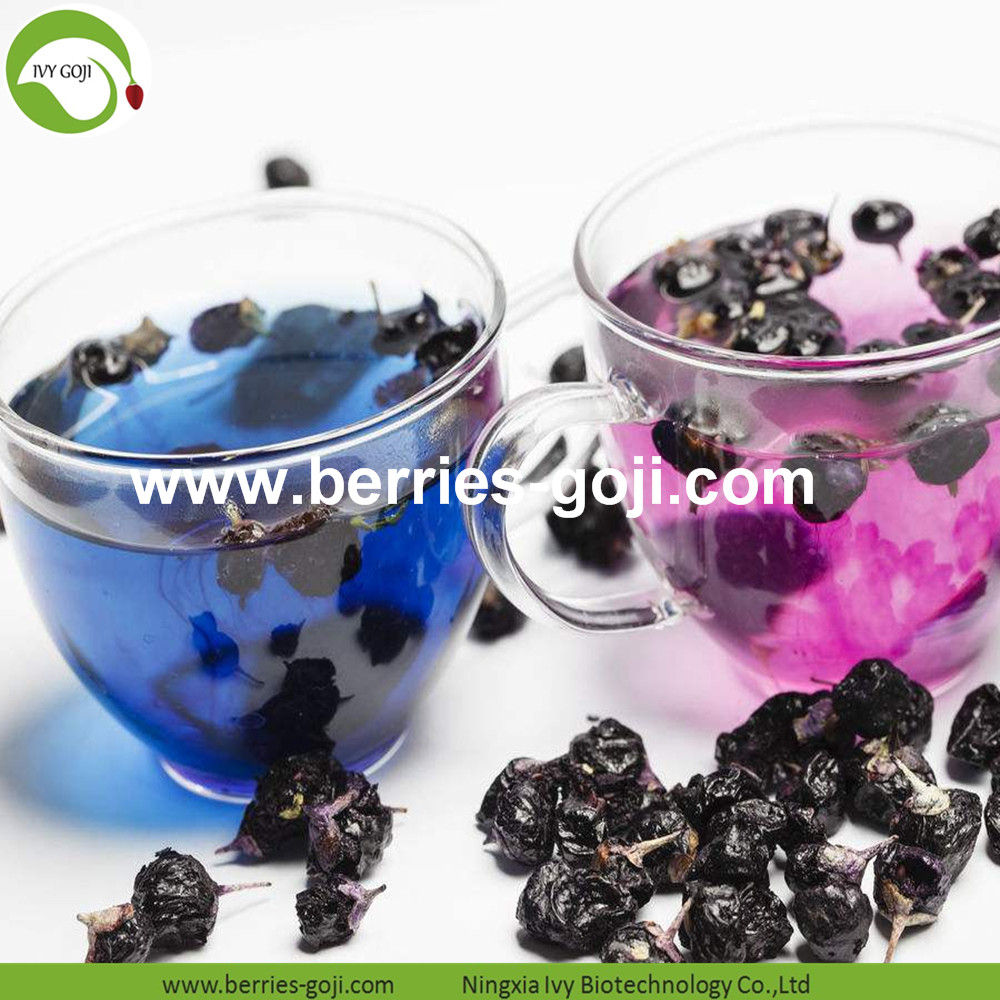 Wild Black Wolfberry