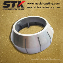 Stainless Steel Casting Parts with Painting Finish