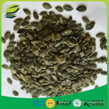 EU hot sell pumpkin seed kernels GWS AAA, GWS AA, GWS A
