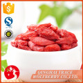 Goji berry fiyat,goji berry plants krem,goji berry seeds