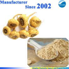 Fornecimento de fábrica de alta qualidade da natureza extrato de maca com preço razoável e entrega rápida na venda quente !!