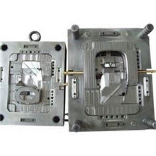 Professional OEM Plastic Mould/Mold/ Mould Tool in China (LW-03634)