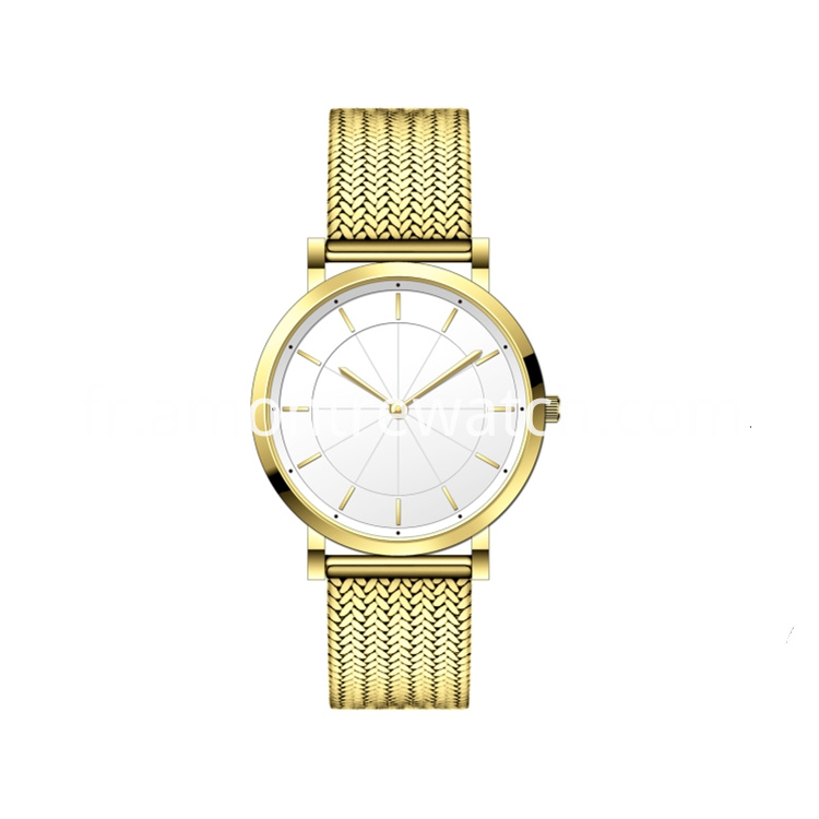 Gold Steel Couple Watch