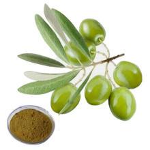 Free sample 100% Natural Pure Hydroxytyrosol 20%-70% Oleuropein Olive Leaf Extract
