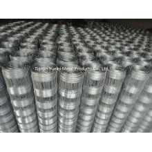 Hot Dipped Galvanized Hexagonal Wire Netting/High Quality Rolls Chicken Wire Netting/China Hexagonal Wire Netting for Chicken Rabbit Dog Poultry
