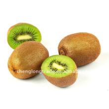 2011 melhor qualidade chinesa kiwi fresco