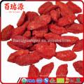 Bacche di goji dove si comprano goji plant goji berries calories