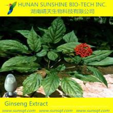 Extracción de partes de hojas y tallos / raíces CAS: 51542-56-4 Ginsenoside Re