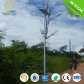 high luminance 30W 36W 40W 50W 60W 70W 80W 90W 100W 120Wsolar yard light&lamp;LED solar street lighting CE SUNCAP