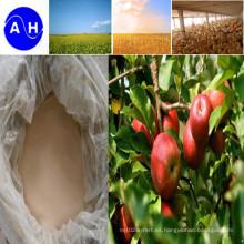 Magnesium Nutrients Aminoácido quelato Fertilizante