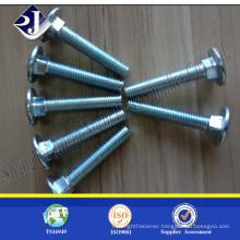 High strength cariage bolt Zinc plated carriage bolt Hot sale carriage bolt