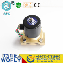 Brass or stainless steel low Price 12V solenoid Valve Waterproof