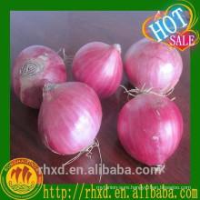 Wholesale Fresh Red Onion Price