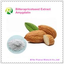 Fornecimento de Fábrica Diretamente Bitterapricotiledônea Extrato de Amigdalina 98%