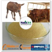 Enzymes spécialisées dans les ruminants, additif alimentaire pour ruminants