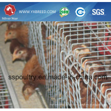 Poultry Equipment Chicken Cage