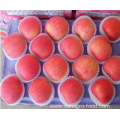 2018 Fresh Red Star Apple