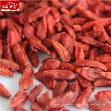 Bayas de Goji orgánicas rojas al por mayor de Ningxia
