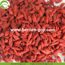 Fabriekslevering Nutrition Dry Fruit Goji Berry