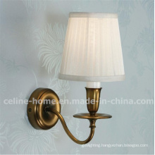 Classical Iron Lamp with Unique Design (C003-1W)