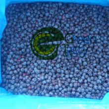 Nova colheita IQF congelado Blueberry selvagem