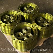 Fabricante de flanges de aço líder com TUV