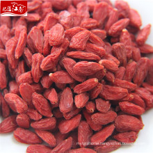 New corp wholesale health benefits of goji berries