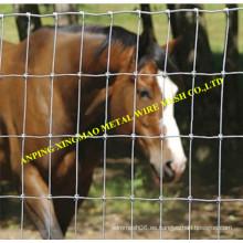 Valla galvanizada caliente de la cabra y del ganado / cerca animal (XMS04)