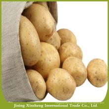 Prix de gros de pommes de terre