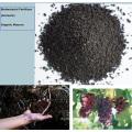 Seaweed bio Microbial base organic fertilizer with amino acid