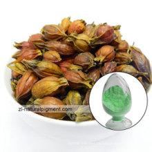 Fabrik Versorgung Gardenia Green Gardenia Pigment