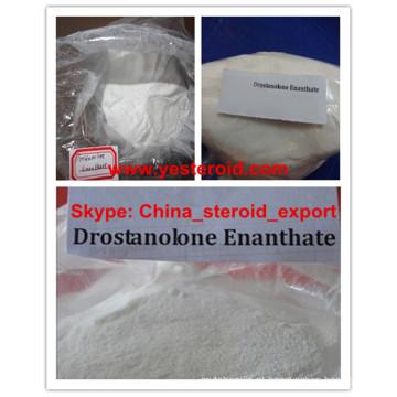 O pó esteróide cristalino branco Drostanolone Enanthate promove o crescimento do músculo