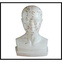Modèle de tête d'acupuncture à la taille normale (M-2-L)