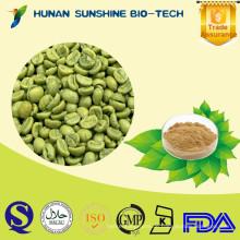 Organischer antimikrobieller Antikrebs Grüner Kaffee PE