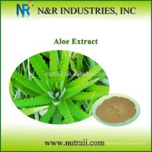 Polvo puro de hierbas en polvo Aloe Vera