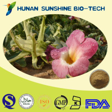 High Quality Natural Plant Extract Devils Claw Extract,Harpagosides 1-5% HPLC