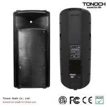 Hot Sale Dual 15 Inches Bi-AMP Active Speaker