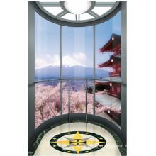 Elevador de paisagem Elevador de paisagem com cabine de vidro