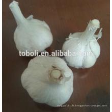 Cangshan ail