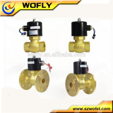 0-180degree brass 220VAC water heater solenoid valve