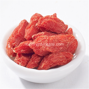 Kering Goji Berries Antioksidan