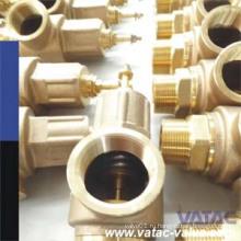 Фланец RF/ДНЯО/bspt используется подпружиненный бронзовый предохранительный клапан.