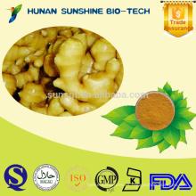 Polvo de cúrcuma de los añadidos como materia prima para la comida y la bebida