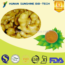 Additives Turmeric Powder As Raw Material for Food and Beverage