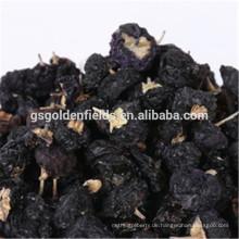 Getrocknetes schwarzes Gojiberry auf heißem Verkauf