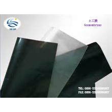 Fabricant Faible Prix PEHD LDPE EVA Composé Géomembrane Texture