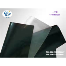 Baixo preço do fabricante HDPE PEBD EVA Composto Geomembrana Textura