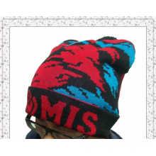 Vente en gros Bonnet Bonnet tricoté d'hiver avec design personnalisé (1-3582)