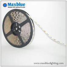 DC12V / 24V SMD3528 LED Streifen Licht